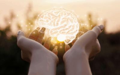 Hoogsensitiviteit – een eerste verkenning